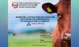 DISEÑO DE LA ESTRUCTURA DE COSTO DE LOS PRODUCTOS SABORIZANTES, ELABORADOS POR AL EMPRESA ADD & TECH, C. A.