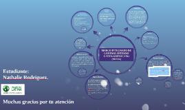 Copy of MARCO INTEGRADO DE CONTROL INTERNO LATINOAMERICANO