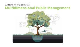 Multidimensional Public Management 6062