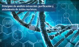 Copy of La extracción y purificación de ácidos nucleicos constituye