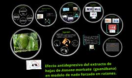 Efecto antidepresivo del extracto de hojas de Annona muricat