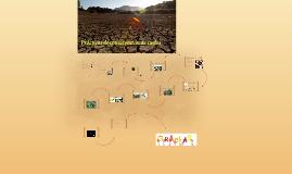 Prácticas de conservación de suelos