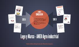 Logo y Marca - ANED Agro industrial