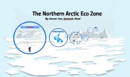 The Northern Arctic Eco Zone