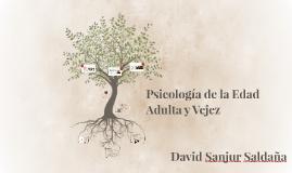 Psicología de la Edad Adulta y Vejez