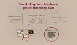 Projektek nyomon követése a projekt futamideje alatt