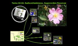2016. Eudicotiledóneas. Superorden Rosanae (T 33-34) para Ambientales.