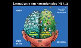 Hersenlateralisatie en bewustzijn