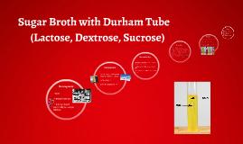 Sugar Broth with Durham Tube
