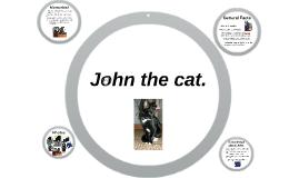 John the cat.