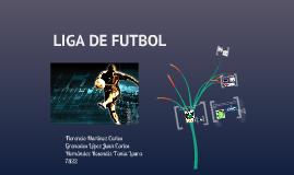 Copy of LIGA DE FUTBOL