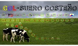 Copy of Col- Suero Costeño