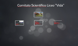 """Comitato Scientifico Liceo """"Vida"""""""