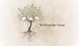 Writing the Essay (Practice/Groups)