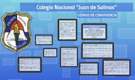 """Colegio Nacional """"Juan de Salinas"""""""