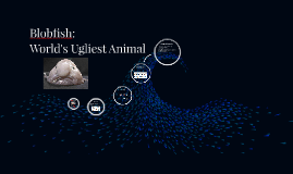 Blobfish: World's Ugliest Animal!