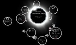 Curriculum plan study programme 2014-2015