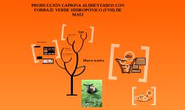 PRODUCCIÓN CAPRINA ALIMENTADOS CON FORRAJE VERDE HIDROPÓNICO (FVH) DE MAÍZ