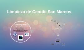 Limpieza de Cenote San Marcos
