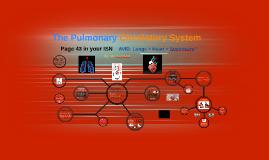 The Pulmonary Circulatory System - 7th Grade