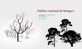 Política Nacional de Bosques