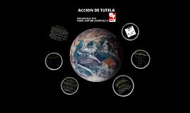 ACCIÓN DE TUTELA