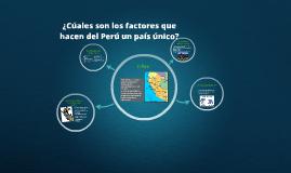 ¿Cúales son los factores que hacen del Perú un país único?