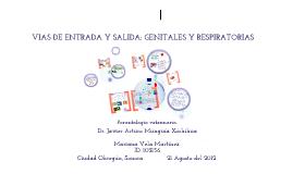 vias de entrada y salida genitales y respiratorias.