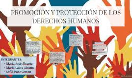 PROMOCIÓN Y PROTECCIÓN DE LOS DERECHOS HUMANOS