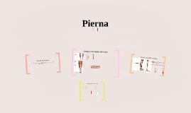 Pierna
