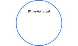 El nervio radial