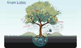 Copy of Grupo Liztex
