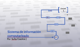 Sistema de informacion computarizado