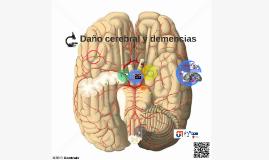 http://www.centralx.es/p/printImage/sistema-cardiovascular/v