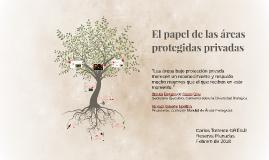 El papel de las áreas protegidas