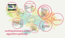 cardiopulmonary arrest algorithm<pathway>