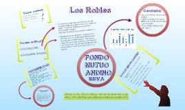 Copy of FONDO MUTUO ANDINO