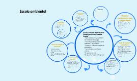 Copy of Escola ambiental :A formação de Estratégia como um Processo