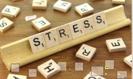 Stress, vad är det?
