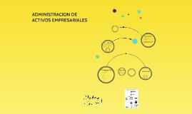 ADMINISTRACION DE ACTIVOS EMPRESARIALES