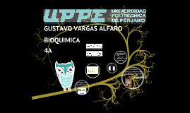 Copy of Funciones Biologicas de las Hexosas