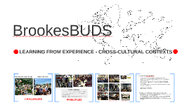 Introduction to BrookesBUDS