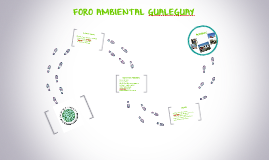 FORO AMBIENTAL GUALEGUAY