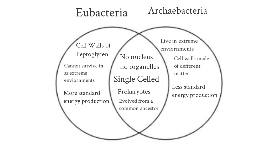 Copy of Eubacteria vs. Archaebacteria Venn Diagram