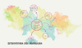 ESRUCTURA DEL PROGRAMA