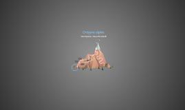 Orògens alpins