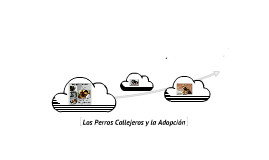 Copy of perros callejeros y la adopcion