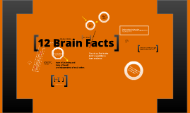 12 Brain Facts