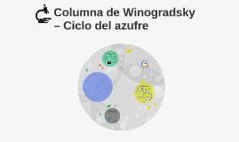 Columna de Winogradsky – ciclo del azufre