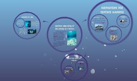 Espèces menacées et pollution de l'océan